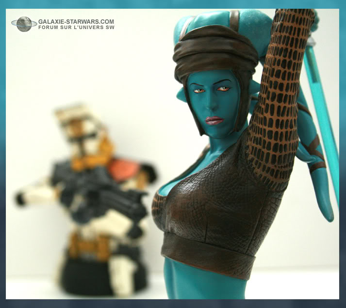 Aayla Secura and Shaak Ti mini-bust - Page 8 Aayla3