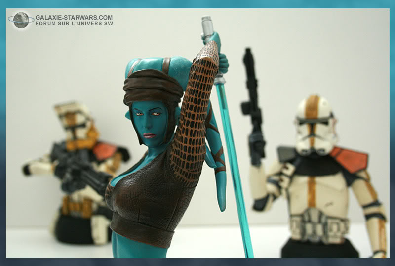 Aayla Secura and Shaak Ti mini-bust - Page 8 Aayla5