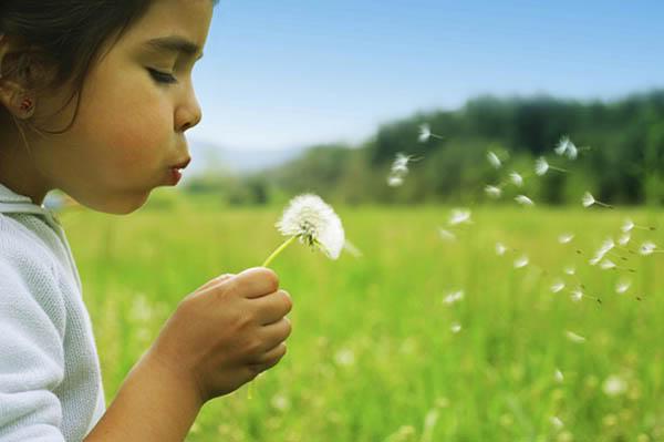 Bồ công anh - FLYLIKL U7_child-dandelion2