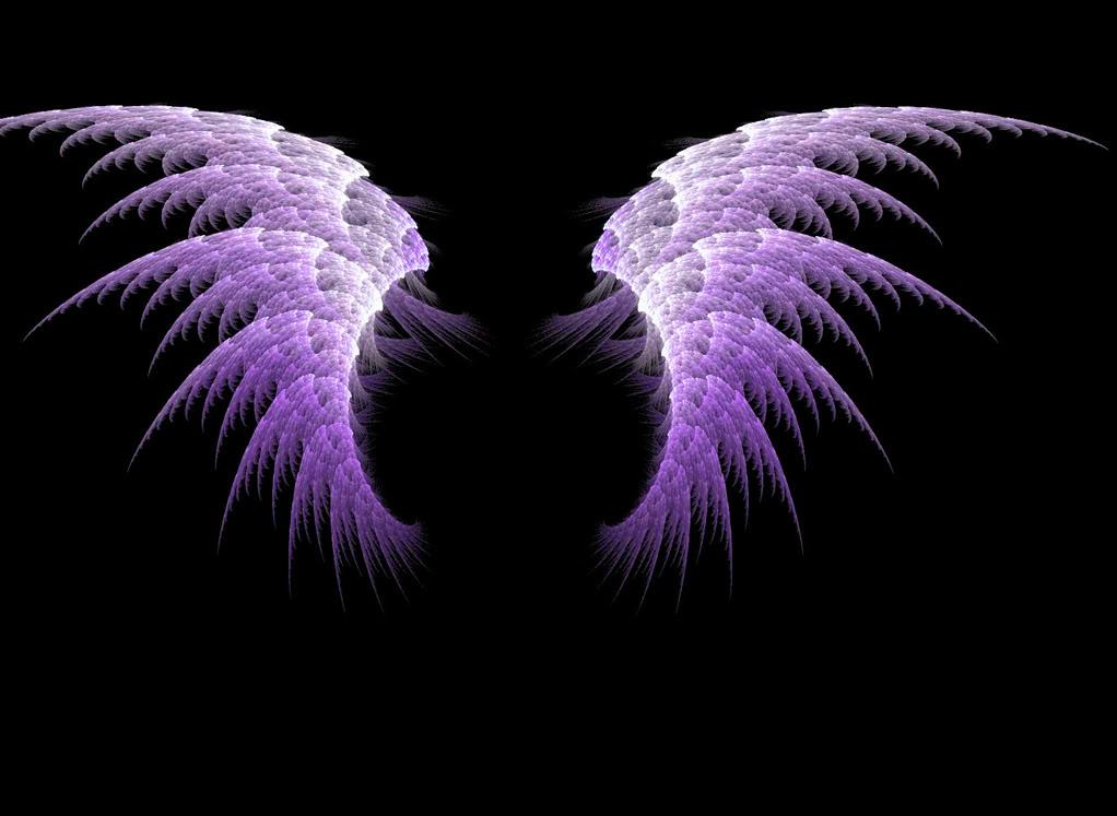 Sayomi  The lost Captain Purplewings24