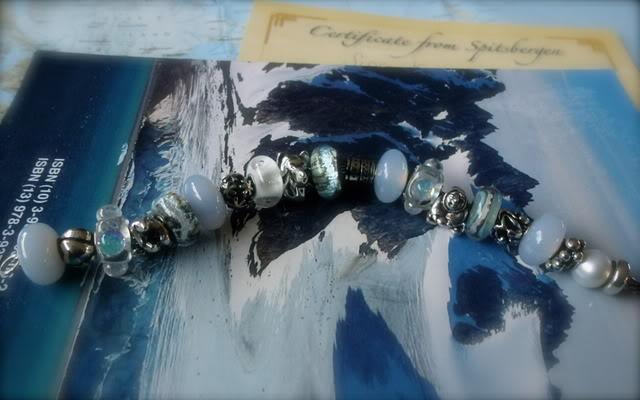 arctic - My arctic Spitsbergen Bracelet ( pic heavy)  P1000057
