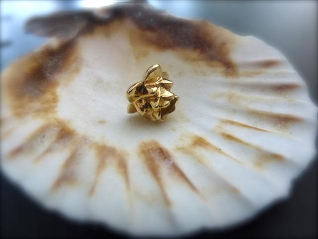 My first goldbead - I`m in love  P1030274