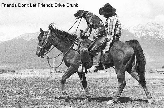 Débourrage en Isère Redneck_drunk_driver