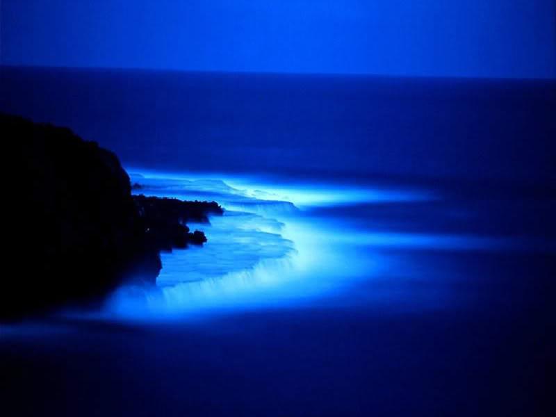 Fotos encadenades Noche20azul20800x600