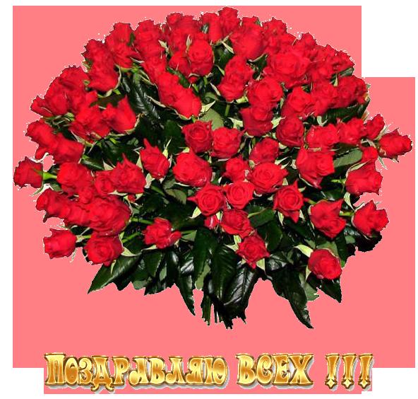 Выпускной бал - декабрь 2012 32748773_100rozes_L1