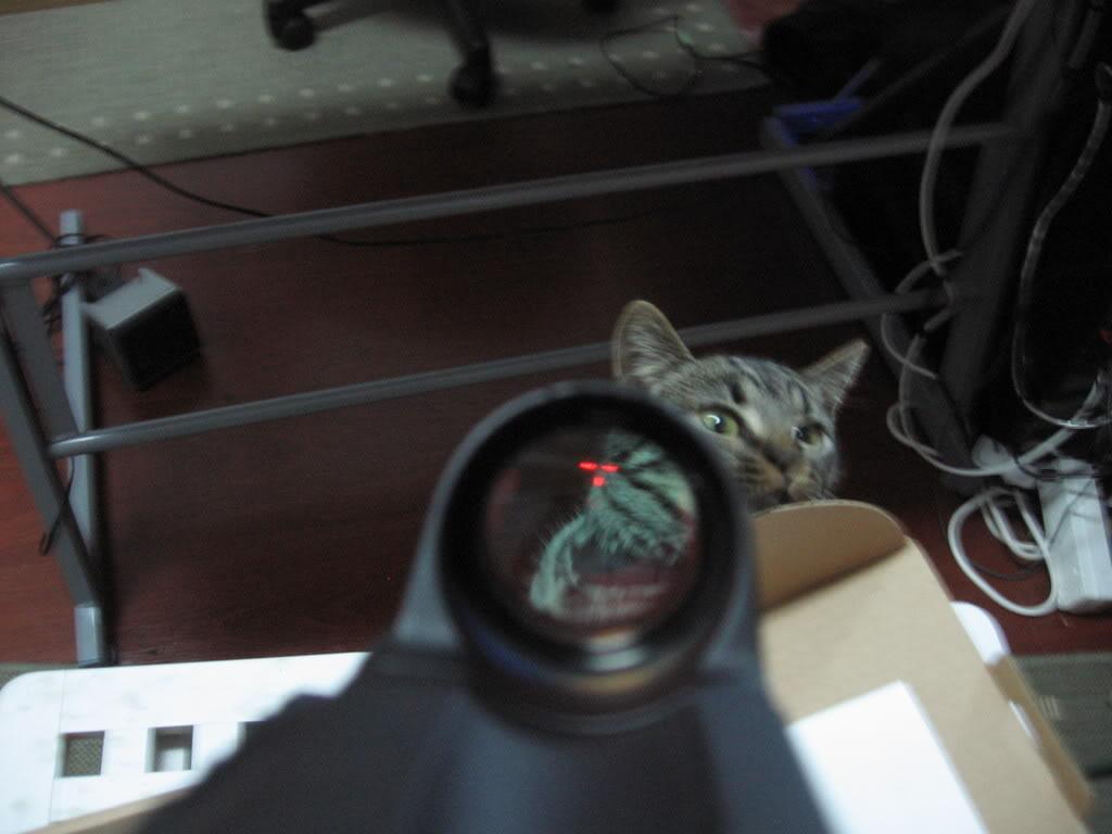 EKP 1S-03 Red Dot Military rifle scope Imagem037