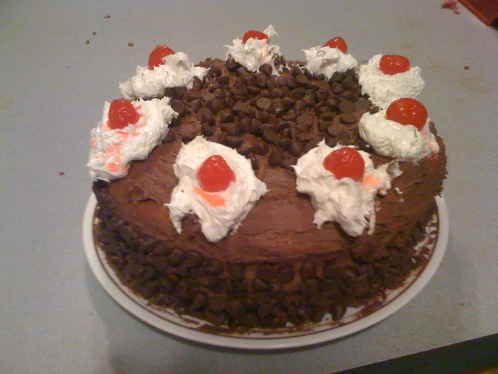 Portal Cake pictures!!! 297a569d