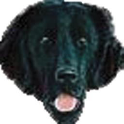 Board look update - Page 2 Lopphound_zpsdecd944e