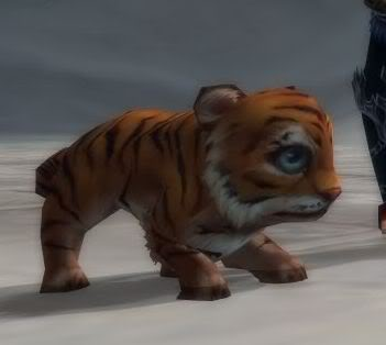 Zhuxian PETS (picz) Tiger1