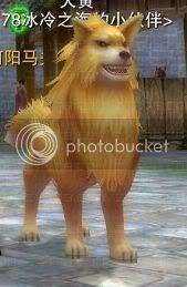 Zhuxian PETS (picz) Dog