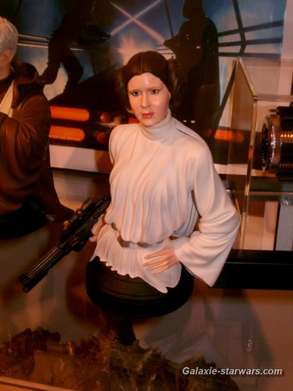 Princess Leia ANH Mini bust - Page 2 HPIM6103