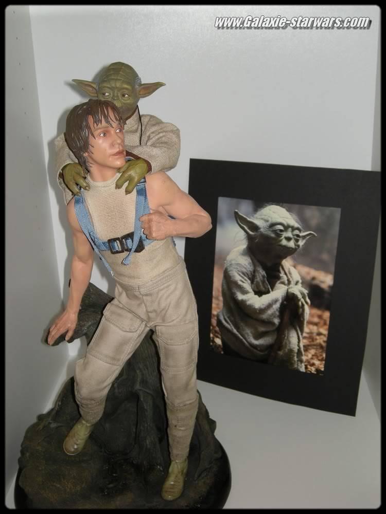 Luke & Yoda - Dagobah Training 1/4 Premium DSCN0575