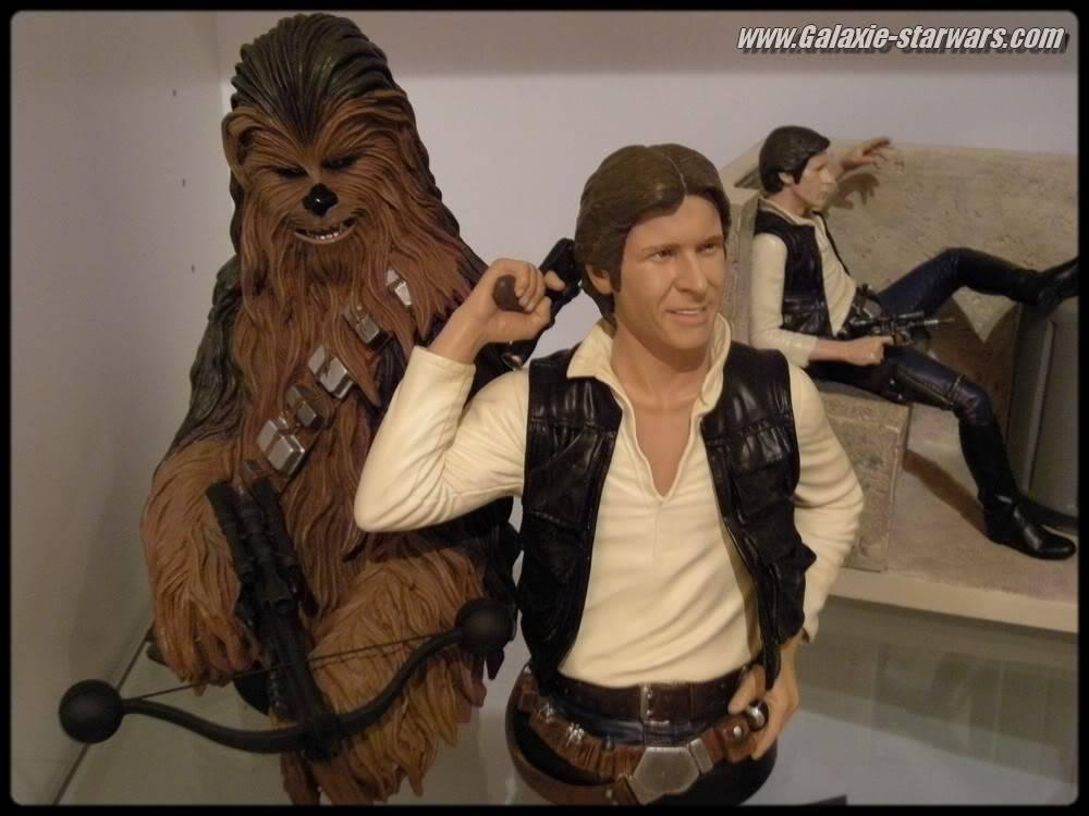 Han Solo Mini bust DSCN0591
