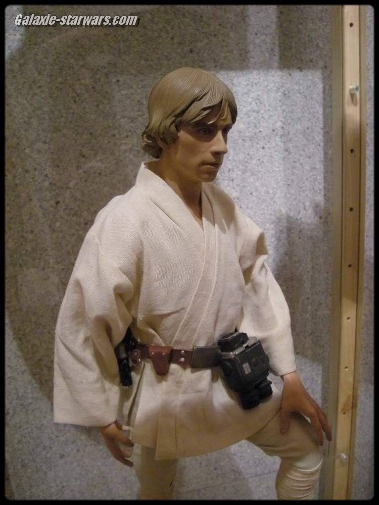 Luke Skywalker 1/4 premium DSCN0689