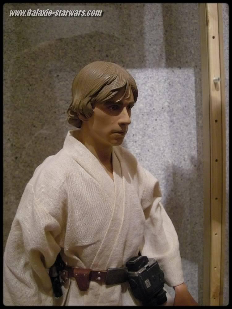 Luke Skywalker 1/4 premium DSCN0690