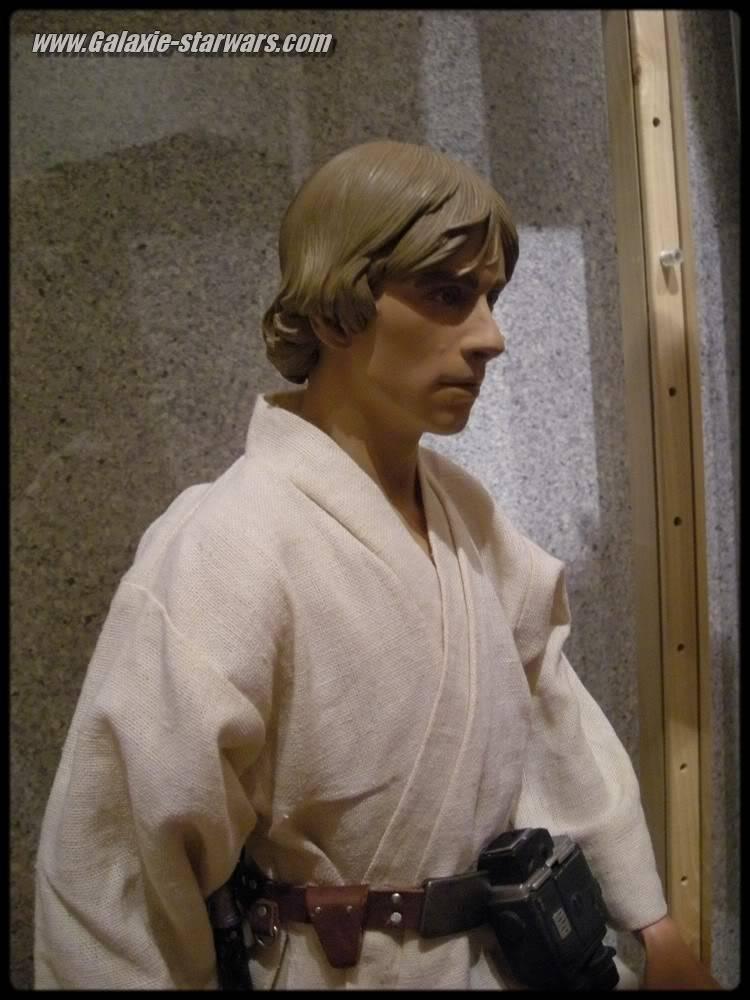 Luke Skywalker 1/4 premium DSCN0691