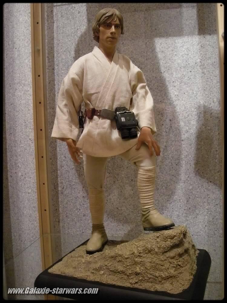 Luke Skywalker 1/4 premium DSCN0697