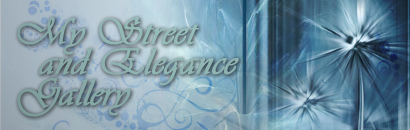 _GiN_'s Street and Elegance Art Gallery Banner
