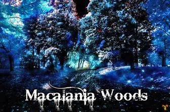Macalania Woods 5