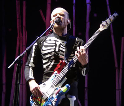 Post a related picture game.. - Page 2 Flea_in_skeleton_t-shirt