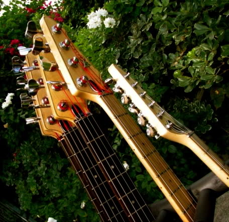 Now the blind shall See...(UPDATE: 2 New Basses) PeaveyHeadStocks