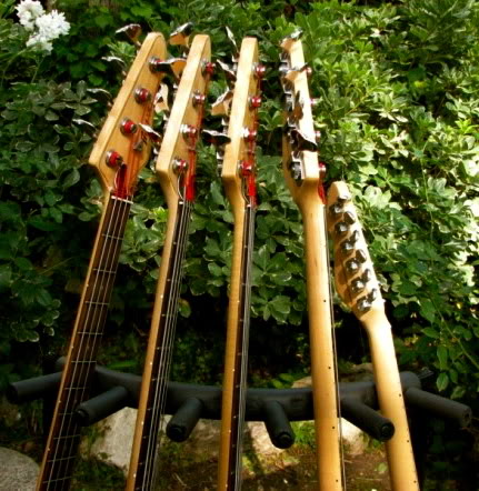 Now the blind shall See...(UPDATE: 2 New Basses) PeaveyHeadstocks2