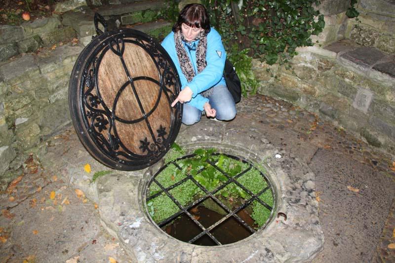 Glastonbury, The Chalice Well (heilige bron) 20101014ChaliceWellAngelina1S