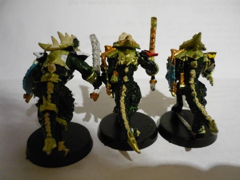 lizardmen - MyLittlePwny's Undead and Lizardmen (Pic Heavy) P1000077