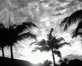 Main Display Picture Hawaii