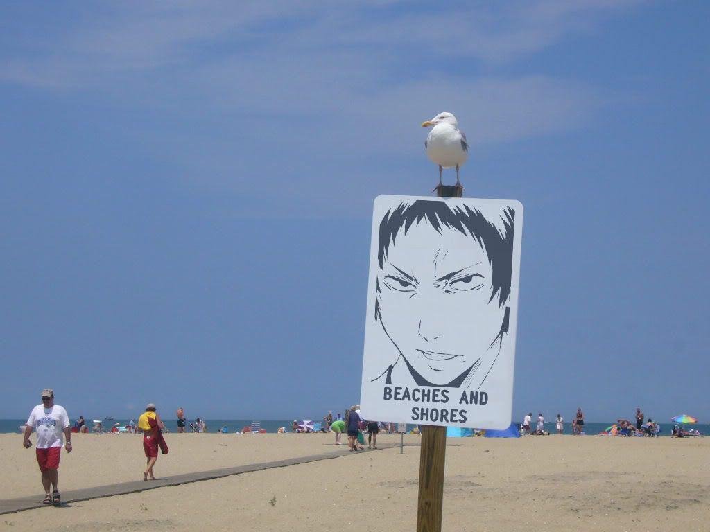 Summertime = Beach 1246945016869