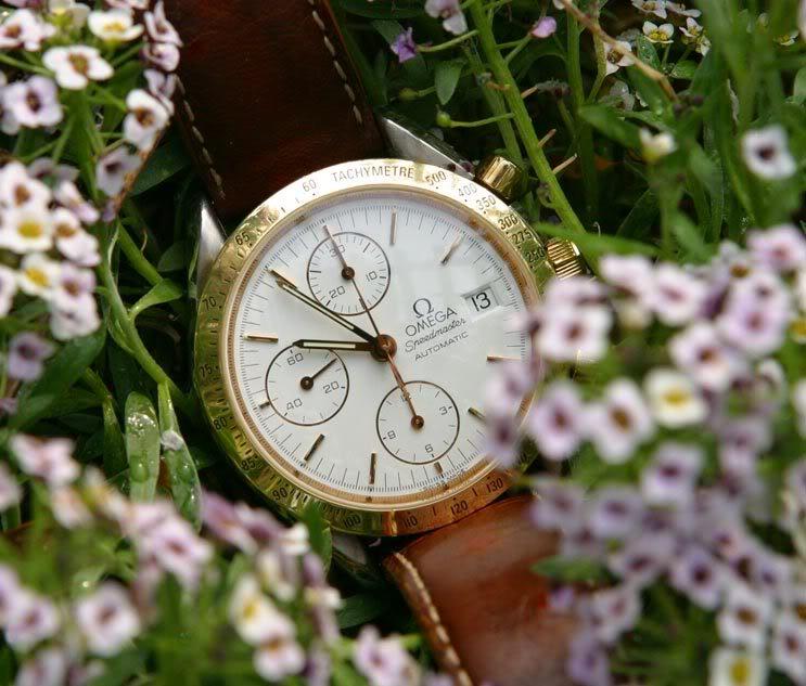 Parlez-nous de votre montre fétiche ! Speed-en-fleur