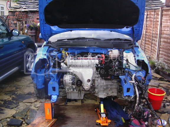 the lupo that never was Itsinandclean