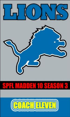 PAST SUPERBOWL WINNERS NFL-Lions-bannerflagcopy