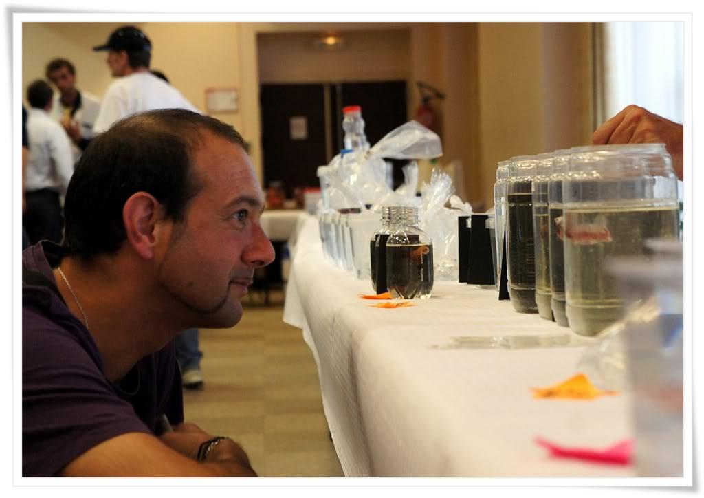 Châtel-Guyon 2012 - l'après concours B
