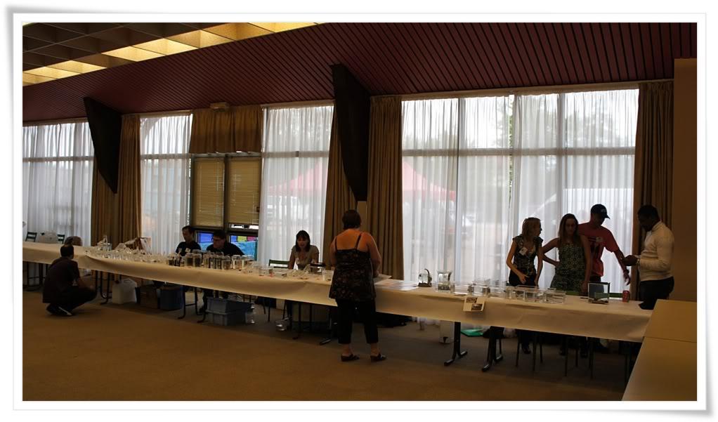 Châtel-Guyon 2012 - l'après concours Curlborder0003-5
