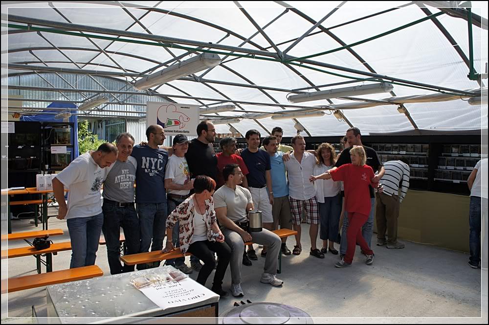 2eme Betta Show Italien 8-10/06/2012 à Ranco/Après 0022-1