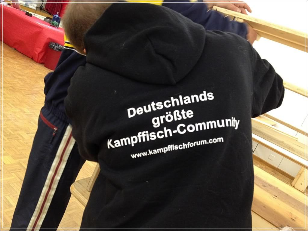 Swiss Betta Show 2012... une cuvée de plus... ;-) Phone0008