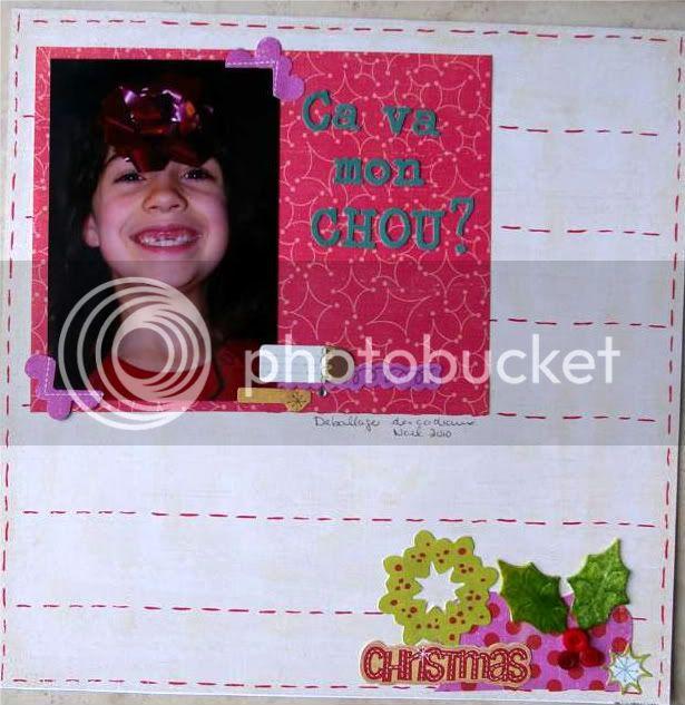 Janvier 2011**ajout 26** IMGP9877