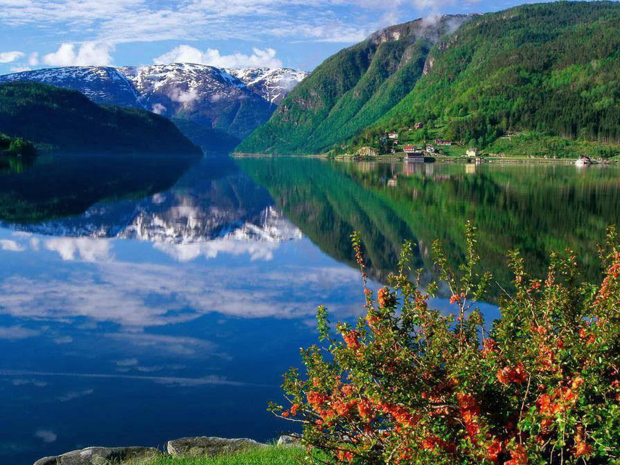 Slike  Planine,prirode,naseg kraja 2222222222222222DIVNAPRIRODA-1