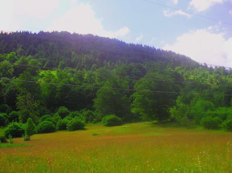 Sulejmanov put kroz planinu ADEDINARAVANKITOZI-1
