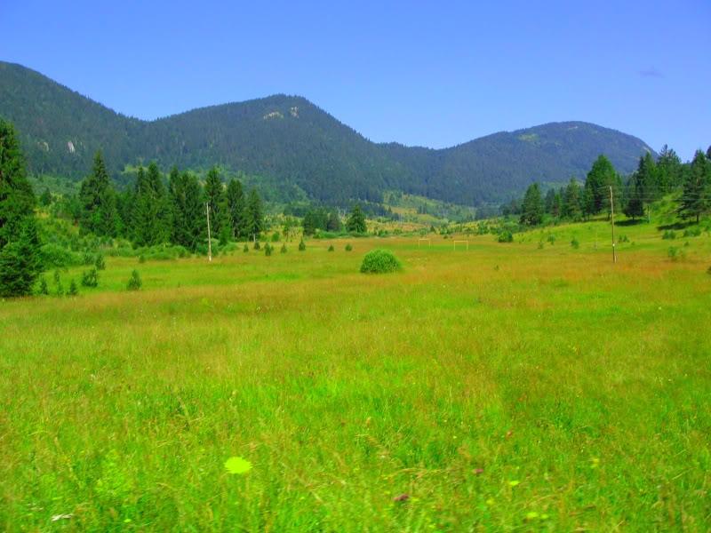 Slike  Planine,prirode,naseg kraja ZZALUCICE-1