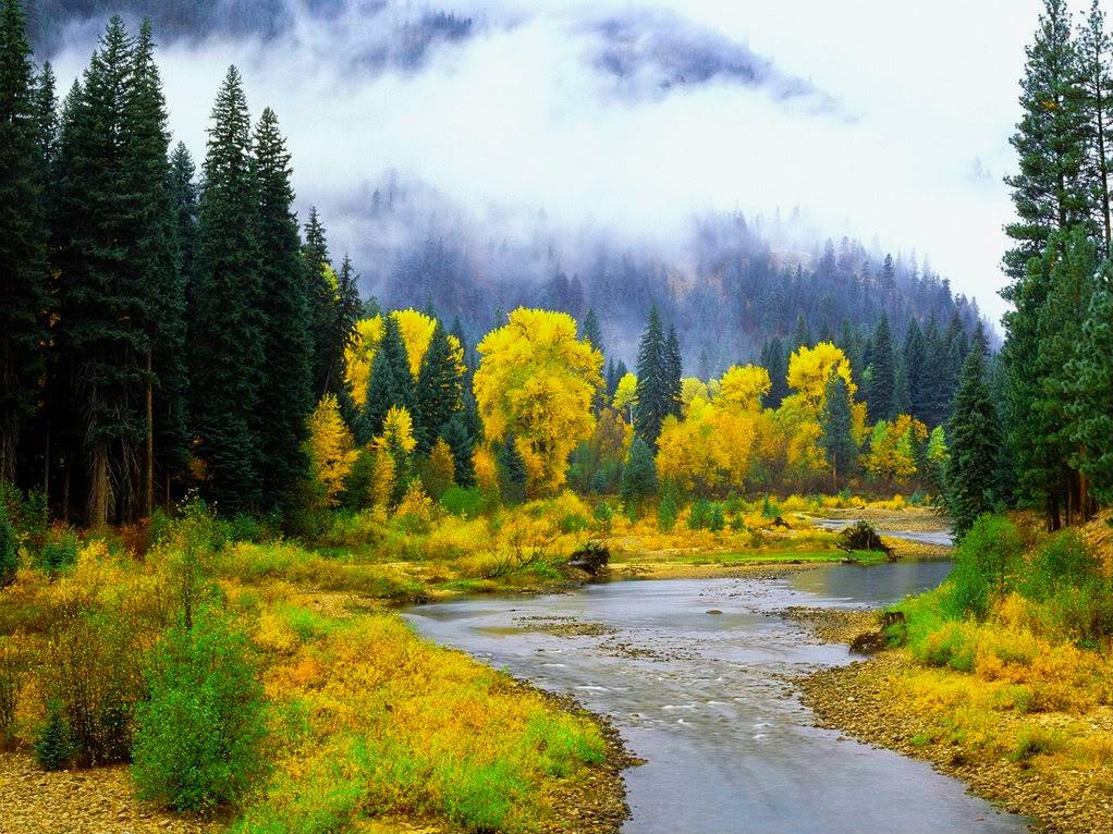 Slike  Planine,prirode,naseg kraja ZZZAPRIRODA-1