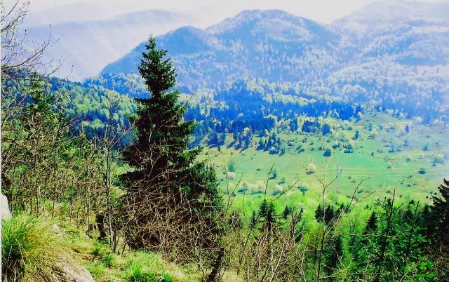 Slike  Planine,prirode,naseg kraja ZZZZUKOLJINSTANSAHRIDOVAURADEN