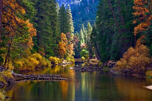 Slike  Planine,prirode,naseg kraja ZZZZZZZZZZZZZZZZZSUMA