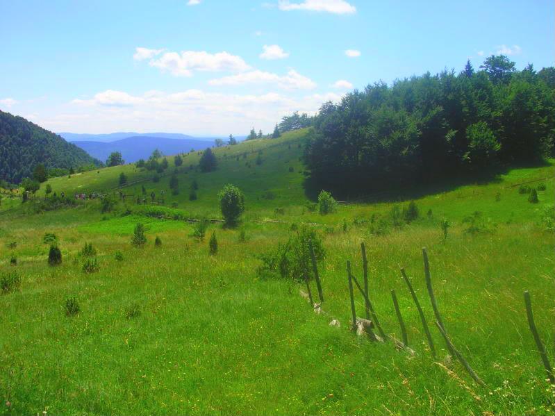 Put kroz nasu planinu.. Slikecavciciisrebrenica183-2