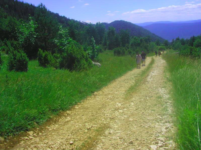 Put kroz nasu planinu.. Slikecavciciisrebrenica189-1