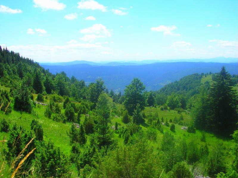 Put kroz nasu planinu.. Slikecavciciisrebrenica191-1