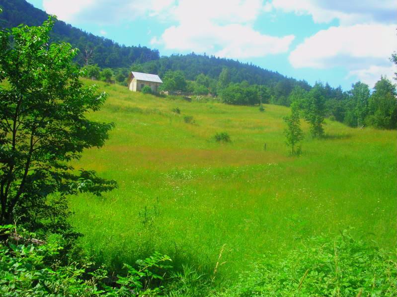 Put kroz nasu planinu.. Slikecavciciisrebrenica251-1