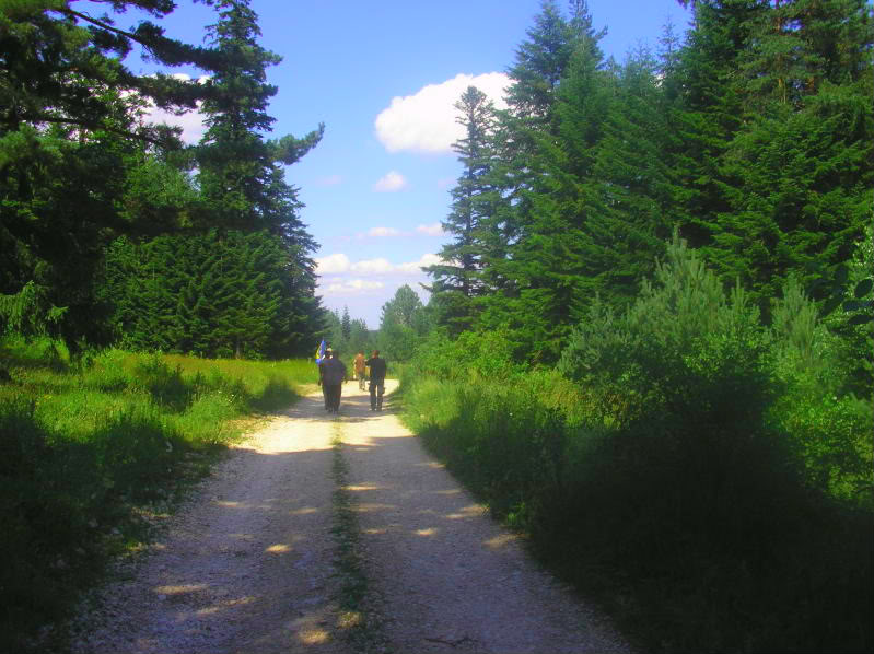 Put kroz nasu planinu.. Slikecavciciisrebrenica257-1