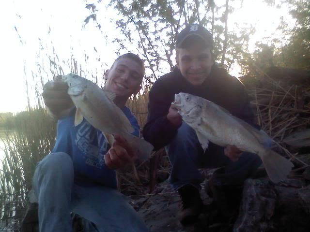 River catfishing is on fire!!!!!!!!! Lots of pics-channels bulls sheephead 0426101949